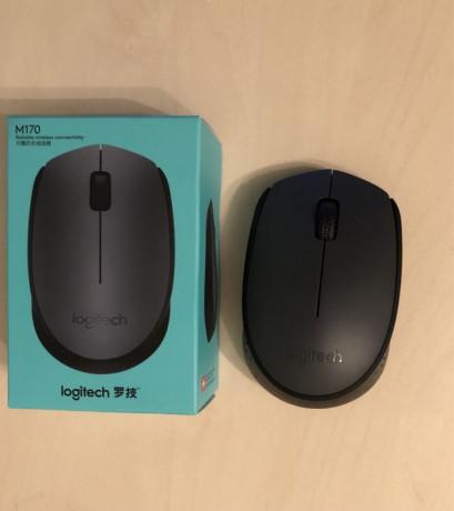 mouse-wireless-logitech-m170-sigilat-big-0